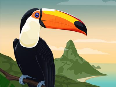 Toucan illustrator brazil bird illustration tropical toucan