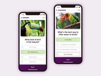 Quiz App - Weekly UI/UX