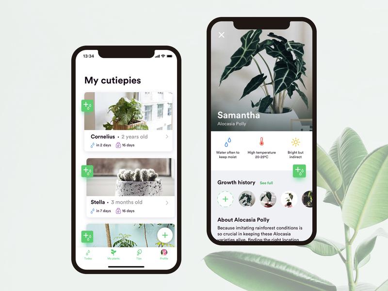 Watering Plant App - Weekly UI/UX weekly challenge ux  ui ux user interaction user interface ui  ux ui watering plants ios clean app design app