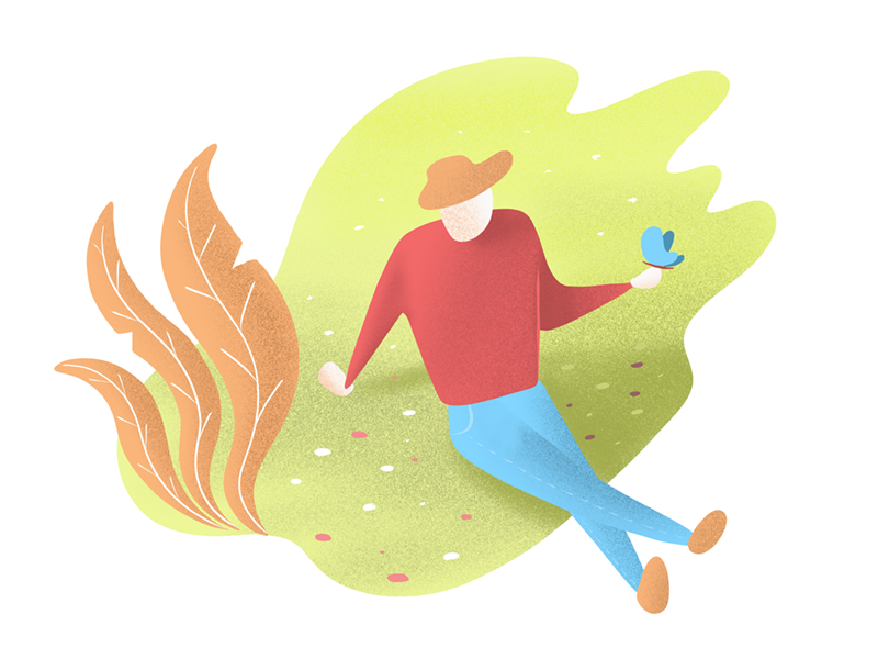 Butterfly nature procreate illustration webillustration