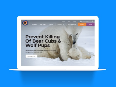 Defenders of Wildlife Website Redesign website design ux web design website
