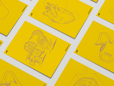 Sulf Brand Illustrations vector branding illustration