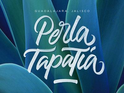 Perla Tapatía | Brushpen Lettering