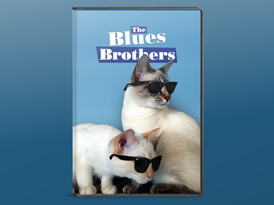 My Cats - The Blues Brothers photoshop cats brothers blues
