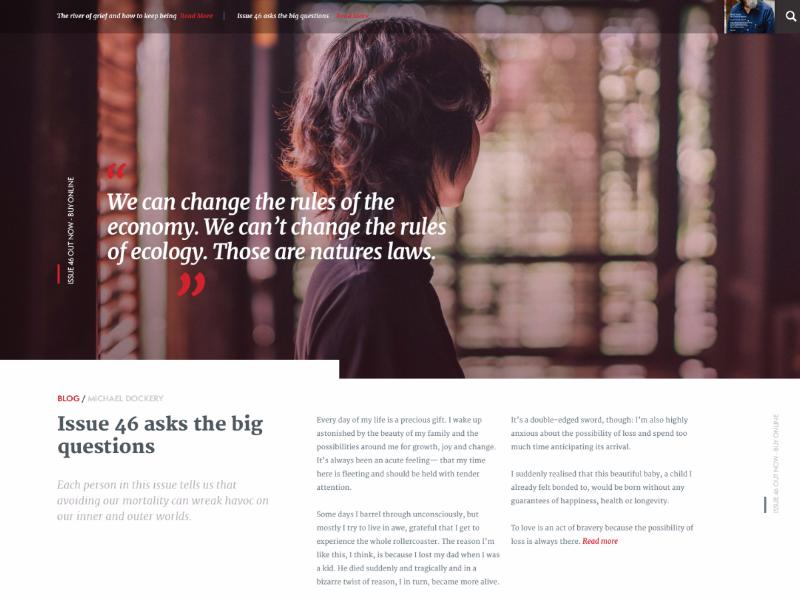 Blog layout design fresh cards photoshop web design ui