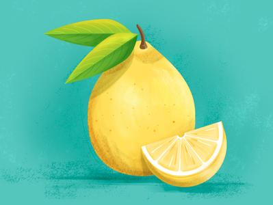 Lemon blue bright colorful green photoshop illustrator leaves fruit yellow