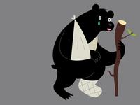Broken Bear