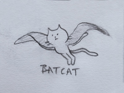 all systems go bat cat fantasy animal dribbble mascot illustration design cartoon character