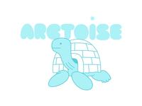Arctoise