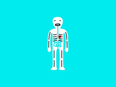airport xray human heart stomach anatomy science medical xray skeleton branding logo dribbble illustration mascot design cartoon character