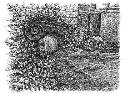 Graveyard Remnants cemetery plants skeleton skull still life artist ink hand drawn art artwork drawing illustration