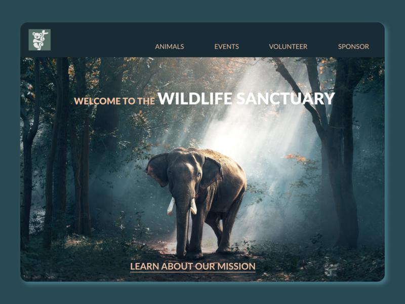 Header Banner for a Wildlife Sanctuary mobile design website design header banner sanctuary wildlife