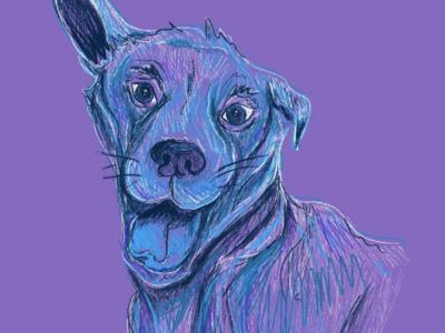 Dog Illustration 2