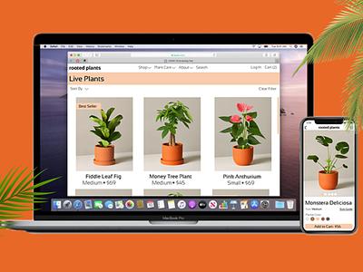 Rooted Plants Web Design shop illustration design ux art ui plants app plants