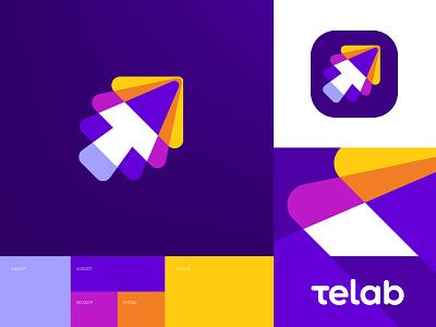 Telab Logo / Software Distributor guideline brandbook brand identity distributor software typography vector branding logo sketch graphics icons ux ui cuberto