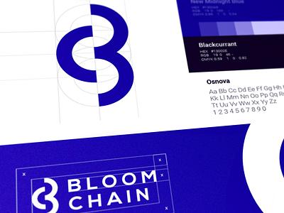 BloomChain Logo Design brandbook guide chain graphics branding cuberto illustration logo sketch icons ux ui
