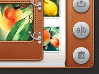 Photoalbum's controls for UI iPad