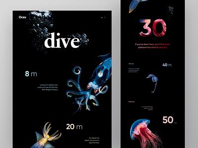 Scuba Diving Destinations graphics trip mask fish sea water depth meter dive destination scuba diving scuba ux ui cuberto