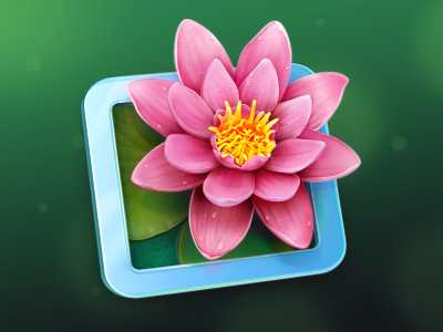LilyView Mac OS icon icons illustration mac os app cuberto flower
