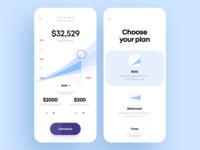 Financial Risks Manager App Design