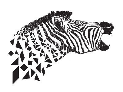Zebra nature composition screaming wild animal cebra illustration deconstruction tangram black  white animal zebra