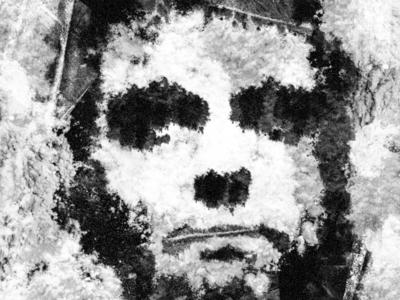 Bolsonaro cocaine portrait