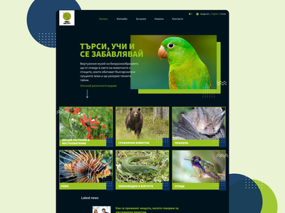 Virtual museum web application design web design homepagedesign website design website webdesign web app design web app