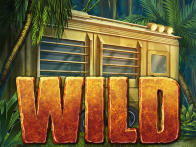 WILD symbols for kin kong slot machine.