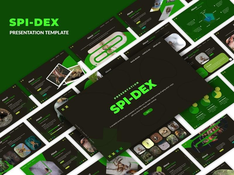 Spidex Presentation Template