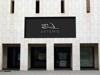 Artemis Storefront Dribbble