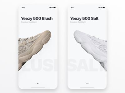 Sneaker Shop Concept
