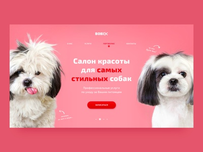 Grooming Salon | Concept animals cute funny pink grooming pets dogs dog minimal ux dailyui homepage ui webdesign web uidesign design