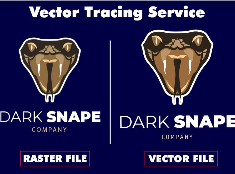 Dark Snape Logo redraw/vector tracing vector art logo typography vectorart vector vectors design vector illustration illustration adobe illustrator