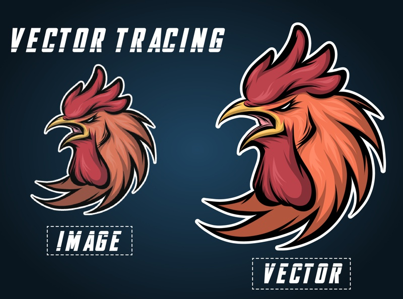 Hen head Vector tracing/redraw logo icon vector vectors vector illustration typography design branding logo illustration adobe illustrator