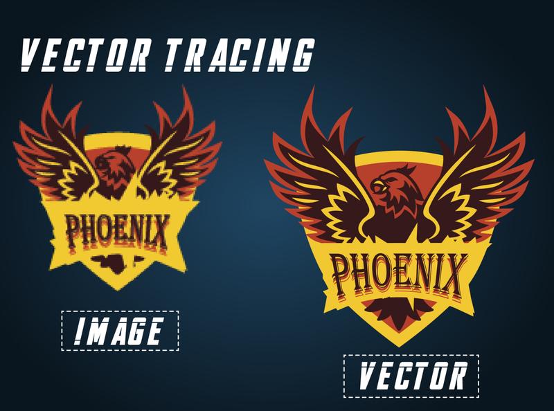 Phoenix Eagle Logo Vector vectorart banner design adobe photoshop icon vector vectors vector illustration typography design logo branding illustration adobe illustrator