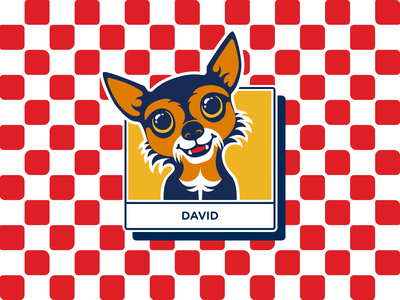 david boreanaz rose cute flat illustration yorkie mix pupper pup doggo dog