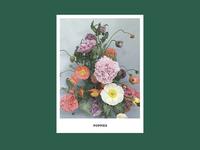 Team Flower Brand Booklet by Soul Twin Studio