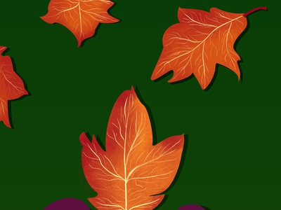 autumn photoshop leaf autumn illustration