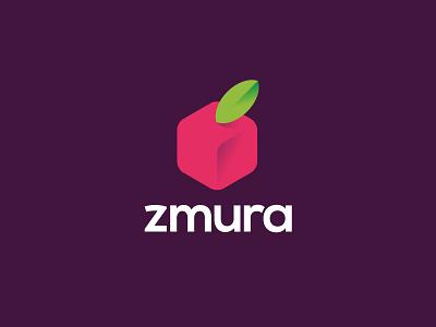 zmura strawberries raspberry zmura bio box fruit