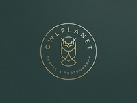 Owl planet elegant stroke line owl gradient animal identity abstract flat icon mark clever branding minimal logo