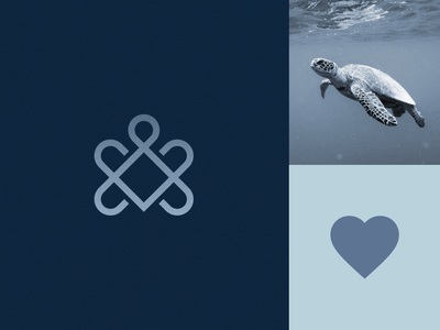 Turtle + Heart mark