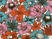 Lotsa flowers...