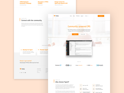 TYPO3 Redesign ux ui simple cms redesign website homepage minimal interface web design web