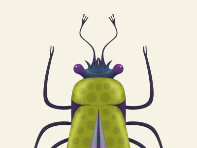 beetle beetle