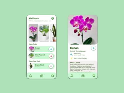 Plant Watering App sketch watering plant minimal uidesign ui mobile ux design