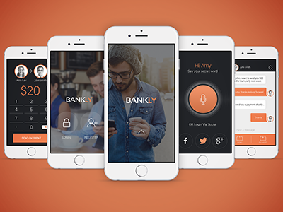 Bankly Small app payment