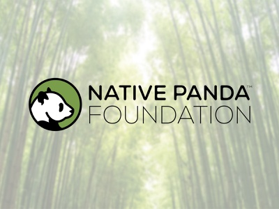 Native Panda Foundation branding bamboo endangered foundation conservation panda daily logo challenge logo