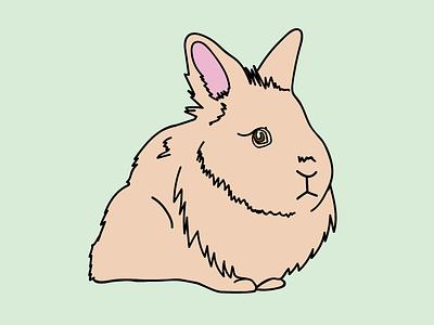 Scully LaPin dana xfiles fluffy lionhead pin lapel vector rabbit bunny scully