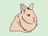 Scully LaPin