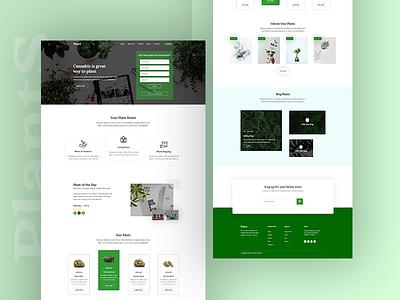 Plant Landing Page Concept concept designer typography agency website web ux ui minimal design